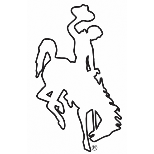 Wyoming Bucking Horse Steamboat Outline