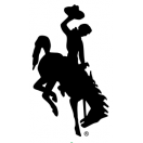 Wyoming Bucking Horse (Steamboat) Solid