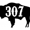 307 Wyoming Buffalo Decal