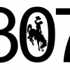 307 Wyoming simple Decal
