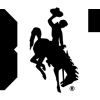 307 Wyoming Block Decal